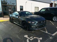 2015 Mustang GT in Guard