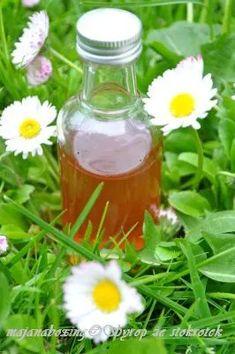 Hot Sauce Bottles, Flora, Gadgets, Herbs, Health, Tortillas, Gardening, Syrup, Drink