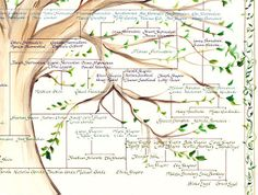 Detail of a Jewish Family Tree, multi generational, artistic, hand-calligraphy… Family Tree Designs, Family Tree Art, Keepsake Crafts, Trauma Therapy, Gouache Painting, Ancestry, Family History, Genealogy, Hand Painted