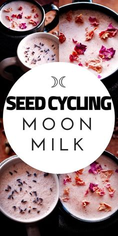 These vegan moon milk recipes make a perfectly healthy, easy and delicious way to balance your hormones with the use of seed cycling for hormone balance. These seed cycling moon milk recipes contain powerful nutrient-dense ingredients such as sunflower se Healthy Eating Tips, Healthy Nutrition, Clean Eating, Nutrition Guide, Nutrition Plans, Milk Recipes, Vegan Recipes, Moon Milk Recipe, Seed Cycling
