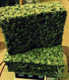 Weed Bricks - blog.cannaberg.com -