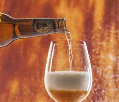New to pumpkin beers? These five choices are a solid place to start your pumpkin education.