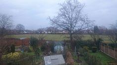 Field behiend a garden.