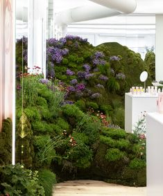 Glossier pop-up shop in Seattle features rolling hills covered in moss and flowers Glossier Pop Up, Mexican Feather Grass, Rolling Meadows, Wildflower Seeds, Flowering Shrubs, How To Level Ground, Installation Art, Landscape Design, Wild Flowers