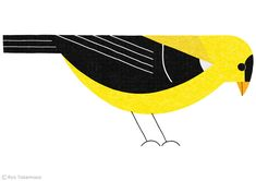 """Goldfinch by Ryo Takemasa 