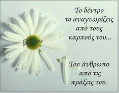 Feeling Loved Quotes, Love Quotes, Religion Quotes, Greek Quotes, Spirituality, Letters, Feelings, Life, Belle