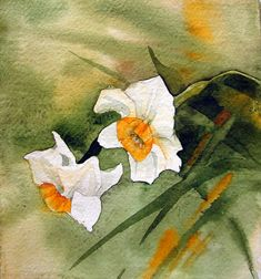 narcissus in watercolor by my paintings, via Flickr