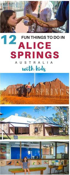 Things to do in Alice Springs & Nearby Area - Thrifty Family Travels Outback Australia, Visit Australia, Australia Travel, Travel Expert, Travel Guides, Travel Tips, Travel Oz, Travel Destinations, Travel Articles
