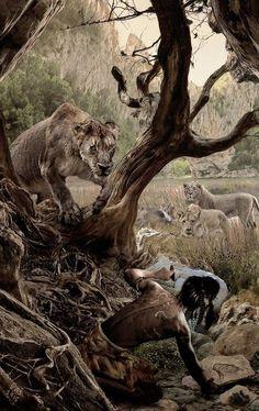 Panthera Leo Spelaea, Jurassic Park, Jurassic World, Prehistoric World, Prehistoric Creatures, Extinct Animals, Fauna, Wildlife Art, Animal Drawings