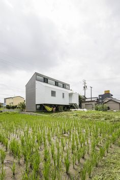 Inspiring Japanese Architecture Neighboured by Rice Fields: Kawate Residence