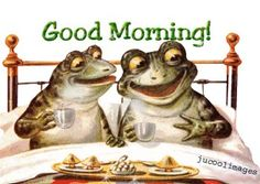 Good morning frogs