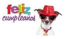 Este divertido perro se pone las mejores galas en esta tarjeta de cumpleaños para desearte lo mejor en tu aniversario.