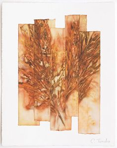 Original one-of-a-kind leaf print created by artist Cassandra Tondro using fallen leaves that are pressed and steamed against paper.