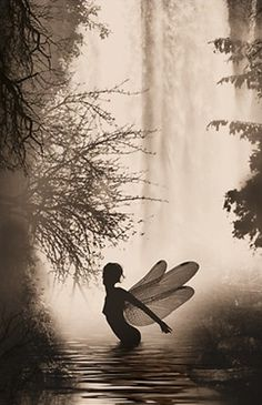 Fairy in the mist