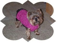 Free Knitting Loom Patterns | ... loom instructions, free knitting pattern, dog sweater knitting pattern