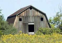 Funny pictures about Surprised Barn. Oh, and cool pics about Surprised Barn. Also, Surprised Barn photos. Things With Faces, Random Things, Funny Things, Hidden Face, Strange Places, Strange Things, Making Faces, Face Photo, What The World