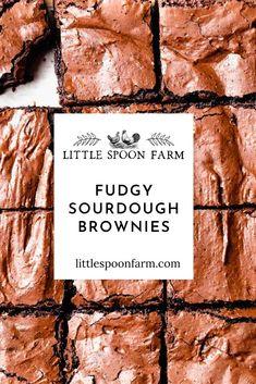 Sourdough Starter Discard Recipe, Bread Starter, Sourdough Recipes, Sourdough Bread, Cocoa Powder Recipes, Brownie Recipes, Bread Baking, Sweet Recipes, Brownies
