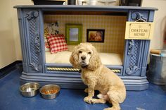 Repurpose an old TV case into a dog bed. Look at the pillows and picture frames lol, so cute!