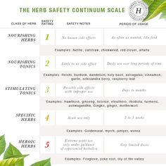 Using Tonic Herbs for Health and The Herbal Academy's Herb Safety Continuum Scale Herbs For Health, Healthy Herbs, Natural Medicine, Herbal Medicine, Medicine Garden, Herbal Remedies, Natural Remedies, Health Remedies, Types Of Herbs