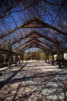 Albuquerque Botanical Garden in Albuquerque, New Mexico