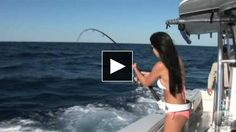 girl vs barracuda