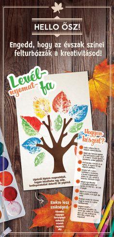 Téged is elbűvölnek az őszi falevelek? Így készíts belőlük szuper dekorációkat…
