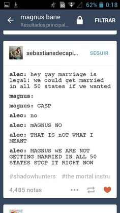 50 States ... shadowhunters, alexander 'alec' lightwood, magnus bane, the mortal instruments, malec