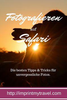 In diesem Artikel geben wir dir die besten Tipps und Tricks für unvergessliche Safari-Fotos!