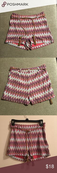 Ruby and Jenna  shorts with suede tassel belt Ruby and Jenna Knit lined multi colored chevron shorts with side zipper and suede tassel belt size small in excellent shape worn once. Shorts