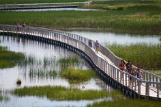 Visitors enjoy the boardwalk on the trail to the dunes at PEI National Park, Greenwich. Park Trails, Prince Edward Island, Anne Of Green Gables, New Brunswick, The Dunes, Scotland Travel, Canada Travel, Nova Scotia, Photo Contest