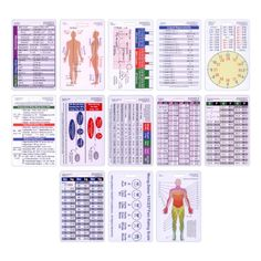 Complete Vertical Badge Card Reference Set Pocket ID Guide Graduation Gift Set Scrubs and Stuff LLC http://www.amazon.com/dp/B00CJ2HS0W/ref=cm_sw_r_pi_dp_7cqZub0PQTVV4