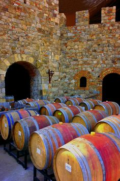 French Oak Barrels full of red wines at the Castello