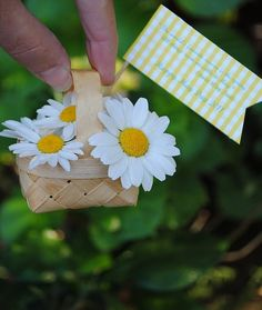 may day, cute love the daisies...always forget about mayday baskets