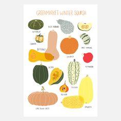 Greenmarket squash print by Claudia Pearson.