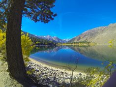 Bridgeport and Twin Lakes, California Bridgeport California, Lakes In California, Stuff To Do, Things To Do, Twin Lakes, Activities To Do, Places To See, Golf Courses, Explore