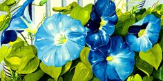 Morning Glories In Blue Painting by Janis Grau - Morning Glories In Blue Fine Art Prints and Posters for Sale