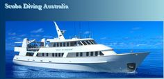 The best options for diving Cairns and other of Australia's East coast locations are outlined in detail with attached enquiry forms. If you are travelling to Australia from Overseas for you will find the best options for Australia's Great Barrier Reef and Coral Sea here