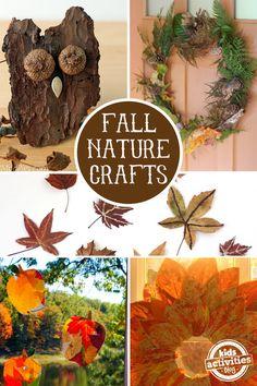 Fall Nature Crafts via Kids Activities Blog