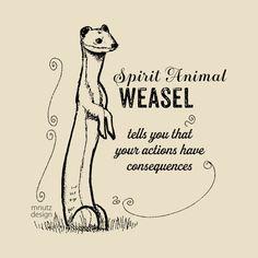 Spirit animal - Weasel - Weasel - T-Shirt | TeePublic T Shirt Designs, Spirit Animal, Told You So, Animals, Animales, Animaux, Animal, Animais, Tee Shirt Designs