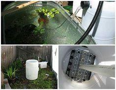 Diy 55 gallon barrel pond filter good description of a for Pond filter media ideas