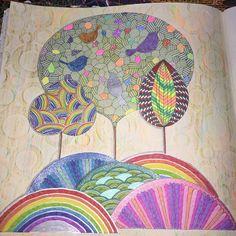 LIBERTE A CRIANÇA QUE EXISTE EM VC!! ✨PONHA UM POUCO DE COR NA SUA VIDA ✨. #pássaros #birds #secretgarden #desenho #fotododia #jardimsecreto #livro #colorindo #cores #brilho #reinoanimal #nostress #books #shine