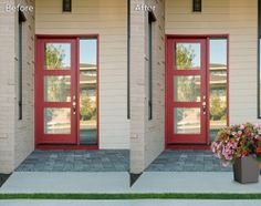 HGTV HOME Plants - One-Step Style™ your front door!