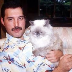 Thank you inter webs for this random photo of Freddy Mercury and an angry kitty
