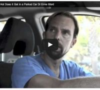 Watch this great video! A vet shows how dogs die in hot cars! Keep your pup safe and read Napa's Daily Growl for this and many other great tips!