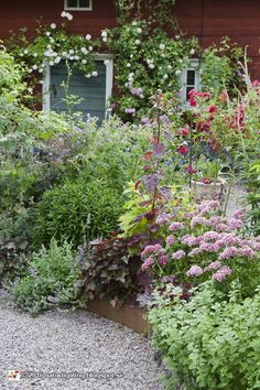 Affordable And Effective Cottage Garden Designing Methods For Your Home Your home is your world, and much like the world around us, looks are important. Cottage Garden Design, Cottage Garden Plants, Love Garden, Dream Garden, Cottage Gardens, Outdoor Plants, Outdoor Gardens, Unique Cottages, Gras