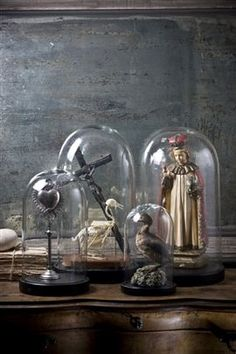 Display of objects under glass domes Glass Bell Jar, The Bell Jar, Glass Domes, Bell Jars, Cloche Decor, Cabinet Of Curiosities, Deco Originale, Style Deco, Apothecary Jars