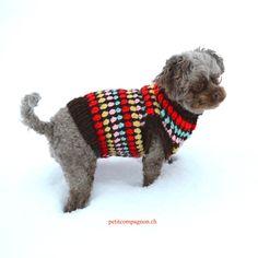 Hundepullover von petit compagnon