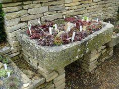 Container rock garden