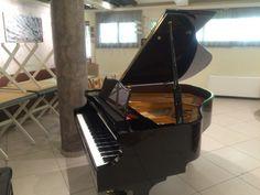 Vendo pianoforte a coda B.STEINER BSIG 52