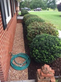 No-Dig Landscape Edging - The Home Depot Vigoro 60 ft. No-Dig Landscape Edging - The Home Depot. Mulch Landscaping, Landscaping Supplies, Landscaping Contractors, Mailbox Landscaping, Landscaping Design, Front House Landscaping, Landscaping Around Patio, Diy Landscaping Ideas, Cheap Landscaping Ideas For Front Yard